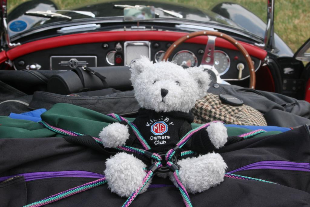 Our club mascot accompanied us to Le Mans 2006.