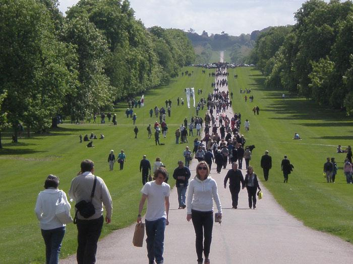 The Long Walk from Windsor Castle